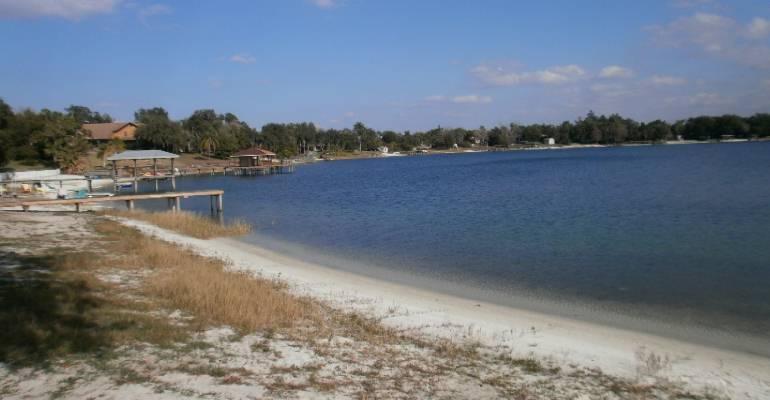 One Tigerrific Domain Mz Florida Trip To